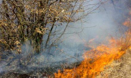Focuri scăpate de sub control