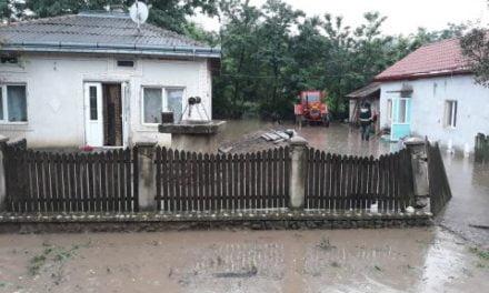 Peste 600 de pompieri, polițiști, jandarmi și polițiști de frontieră au intervenit în sprijinul populației
