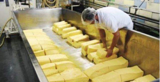 Cum recunoașteți brânza și cașcavalul care nu conțin lapte, realizate din uleiuri vegetale sau alte produse care imită laptele