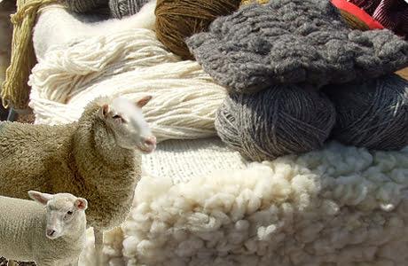 ,, Programul de susținere a crescătorilor de ovine pentru comercializarea lânii ,,