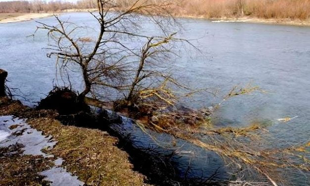 Răul Prut ne rupe zilnic din teritoriul Românie la Baranca Hudeşti. Bani  de la Guvern pentru reamenajarea