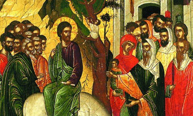 FLORIILE 2019. Obiceiuri şi tradiţii de Florii. De ce trebuie să iei ramuri de salcie de la biserică
