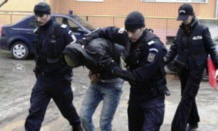 Tânăr de 23 de ani din Hudești reţinut pentru furt calificat