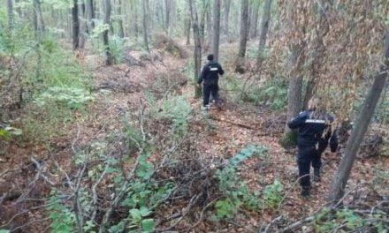 Mobilizare de forţe pentru a găsi un bărbat dispărut în pădure