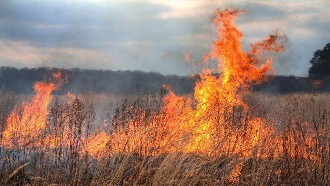Un bărbat din Bajura găsit de soţie carbonizat pe câmp