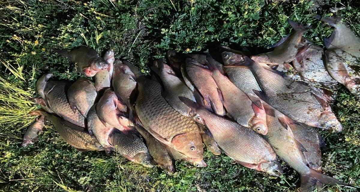 Pescari la vreme de seară