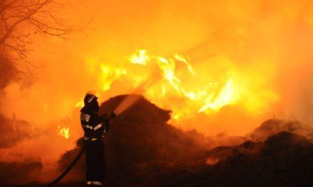 15 tone de furaje distruse într-un incendiu, la Vorniceni