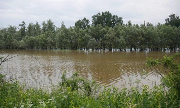 """Baraj rupt în Ucraina. Prefect Botoșani: """"S-ar părea că Cernăuțiul va fi inundat. Spre noi se îndreaptă ceva serios"""""""