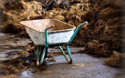 Fără gunoi de grajd în curte! Primăriile ar putea fi obligate să se ocupe de colectarea şi stocarea gunoiului de grajd din localități